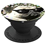 Funny cool Pug with sunglasses - fun humorous pet dog humor - PopSockets Grip and Stand for Phones and Tablets