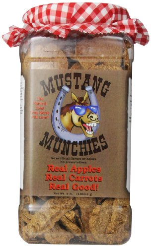 Mustang Munchies Plastic Canister Equine Pet Treats, 3-Pound