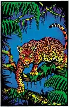 (23x35) Jaguar in Tree Blacklight Poster Print