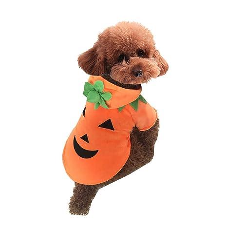 O-center - Disfraz de Calabaza para Mascota, Perro, Gato, Cachorro,