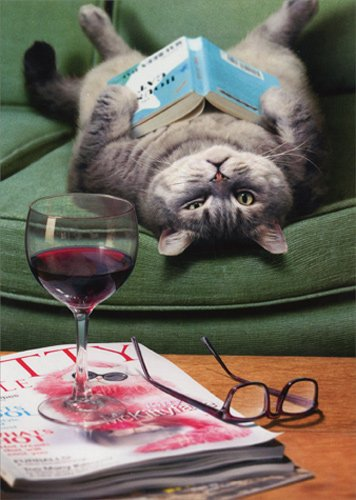 Upside Down Cat Reading Book - Avanti Funny Mother's Day - Down Upside Reading Glasses