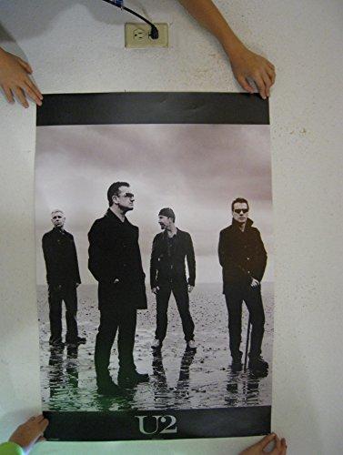 - U2 Group, Standing Music Poster Print - 24x36