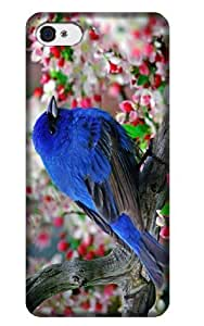 WMSHOPE? iPhone 4 4s Case Cover NEW PHOTO BEAUTIFUL BLUE BIRD IN TREE