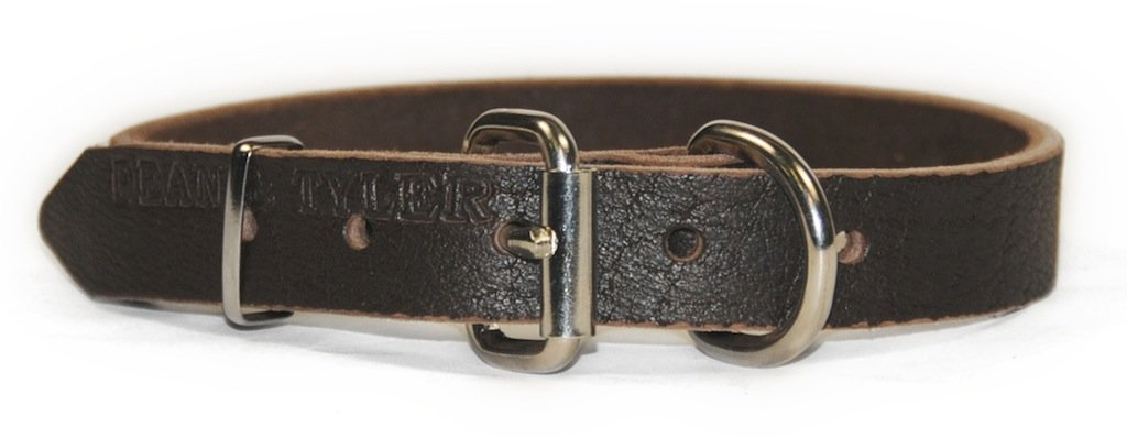 Dean and Tyler  B&B  Dog Collar Nickel Hardware Brown Size 8  x 3 4  Width. Fits neck size 6 Inches to 10 Inches.