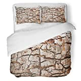 SanChic Duvet Cover Set Brown Macro Tree Bark Wood Abstract Close Closeup Decorative Bedding Set with 2 Pillow Shams Full/Queen Size