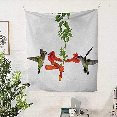 irds Pattern Tapestry Two-Hummingbirds-Sipping-Nectar-from-a-Trumpet-Vine-Blossoms-Summertime Big Tapestry 40W x 60L INCHRed-Black-Green ()