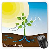 BGLKCS Educational Mouse Pad by, Simple Photosynthesis Scheme Plant Sun Molecules Chemical Chain Growth Ecology, Standard Size Rectangle Non-Slip Rubber Mousepad, Multicolor