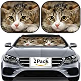 MSD Car Sun Shade for Windshield Universal Fit 2 Pack Sunshade, Block Sun Glare, UV and Heat, Protect Car Interior, Image ID: 15427542 Frightened Tabby cat