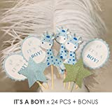 Value Pack- 24 Cupcake Toppers Picks- Various Themes (It's a Boy!)