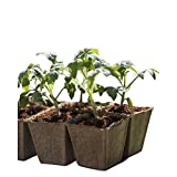 VANNGROUP - Seedling Starter Trays - Germination Seedling Trays - Seed Starter Peat Pots Kit - 5 Pack 50 Cells