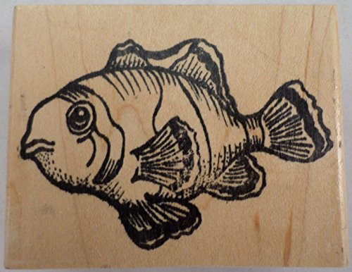 Tropical Clown Fish Aquamarine Wildlife Wooden Rubber Stamp