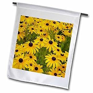 3dRose fl _ 27478_ 4negro Eyed Susans Floral II bandera de Jardín, 12por 45,72cm