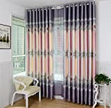 GFYWZ Curtains High-grade European style Polyester Cationic Jacquard Blackout Noise Reduction Durable Living room Bedroom Decor Window Drapes , 3 , C Review