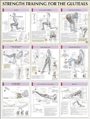 Amazon.com: Strength Training for the Buttocks Poster (Strength ...