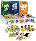 Geddes Jungle, Sea, and Farm Life Erasers Display