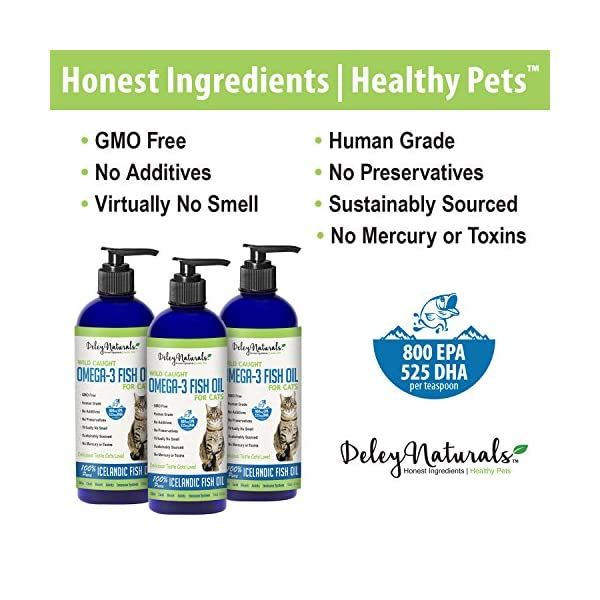 Wild Caught Fish Oil for Cats - Omega 3-6-9, GMO Free - Reduces Shedding, Supports Skin, Coat, Joints, Heart, Brain, Immune System - Highest EPA & DHA Potency - Only Ingredient is Fish - 16 oz 4