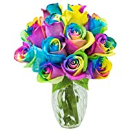 KaBloom Valentine's Day Special: Fresh Cut Rainbow Rose Bouquet of 12 Rainbow-Swirl Roses with Vase