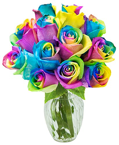 KaBloom Fresh Cut Rainbow Rose Bouquet of 12 Rainbow-Swirl Roses (Farm-Fresh, Long-Stem) with Vase
