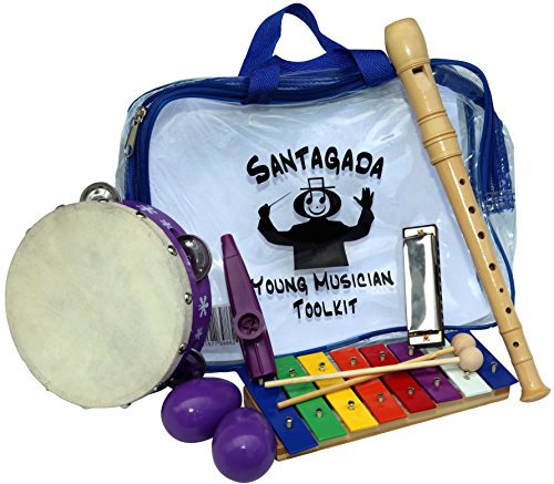 Musical Christmas Egg - Young Musician Toolkit - Xylophone, Recorder, Tambourine, Harmonica, Kazoo, Two Egg Shakers - Quality Musical Instruments for Kids + Convenient Carrying Case