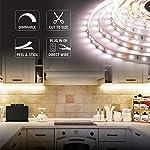 Armacost Lighting 421502 LED Tape Light Kit, 16 ft, 3000K (AC Dimmable) 9