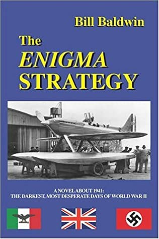 book cover of The Enigma Strategy