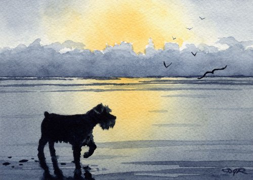 Miniature Schnauzer Sunset Art Print by Artist DJ Rogers