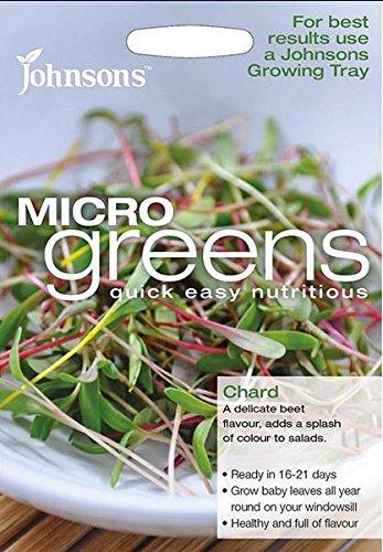Salad Microgreen Chard Bright Lights Johnsons 800 Seeds