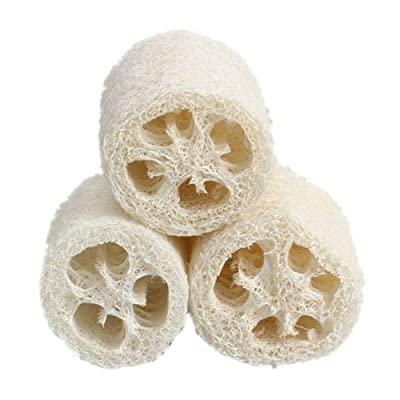 Pack of 3 Natural Loofah for Pet Tooth Cleaning Dog Cat Chinchillas Small Animal Chew Toys