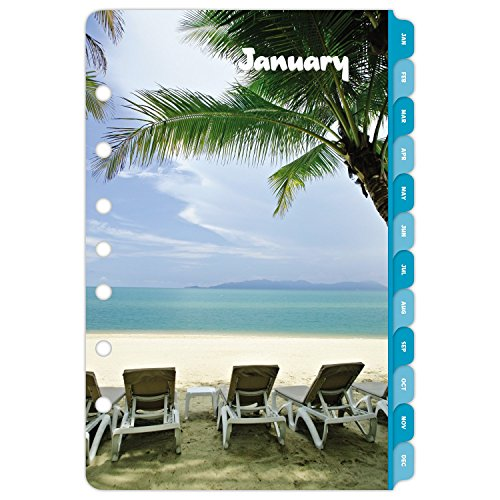 Day Timer Daily Planner Refill 2017 Two Page Per Day