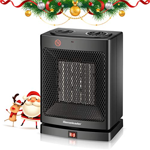 Homeleader Ceramic Space Heater for Home and Office , Portable Electric Heater with Adjustable Thermoststs, 750W/1500W