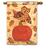 Fall Frolic House Flag
