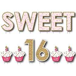 Big Dot of Happiness Sweet 16 - Yard Sign Outdoor Lawn Decorations - Happy Birthday Yard Signs
