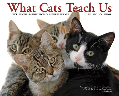 Large 2010 Wall Calendar - What Cats Teach Us 2011 Wall Calendar (Life's Lessons from Our Feline Friends)