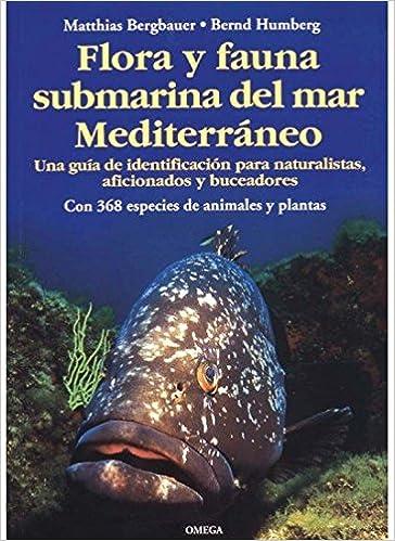 Flora y fauna submarina del Mar Mediterráneo.