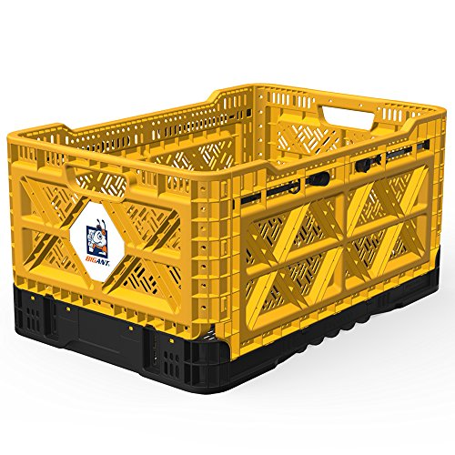 BIGANT Heavy Duty Collapsible & Stackable Smart Crate - Absolute Snap Lock (Holiday Tiny One Ornament)
