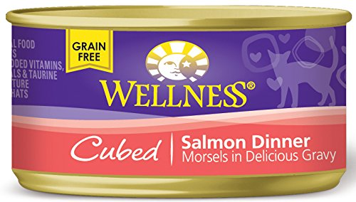 076344026655 - Wellness Natural Canned Grain Free Wet Cat Food, Cubed Salmon, 3-Ounce Can (Pack of 24) carousel main 0