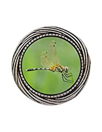 GiftJewelryShop Ancient Style Silver Plate Beautiful Cute Dragonfly Winding Pattern Pins Brooch