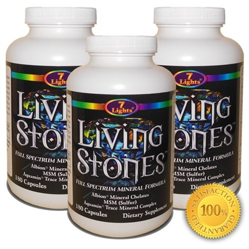 Living Stones (Chelated Minerals, Organic Sulfur Complex & Trace Minerals) by 7 Lights Nutrition