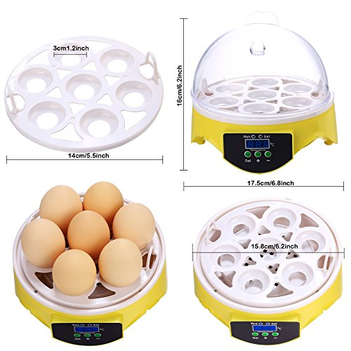 kemanner Automatic 48 Digital Clear Egg Incubator Hatcher Egg Turning Temperature Control 80W US Plug