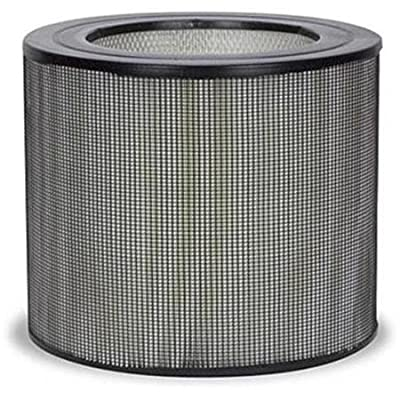 Honeywell RW29500 Air Purifier Replacement Filter