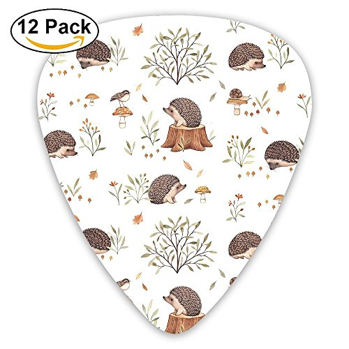 12-pack Fashion Classic Electric Guitar Picks Plectrums Hedgehog Cute Pattern Instrument Standard Bass Guitarist