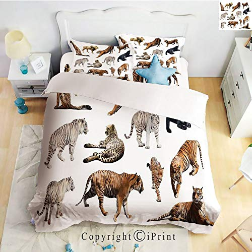 (Homenon Hight Quality 4 Piece Bed Sheet Set,Collection of Tigersand Other Big Wild Cats Predatory Feline Zoo Lying Standing Background,King Size)
