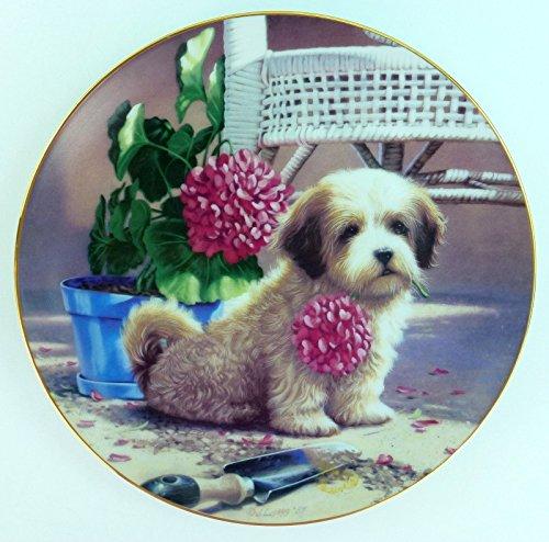 Jim Lamb Puppy Playtime 8 1/2