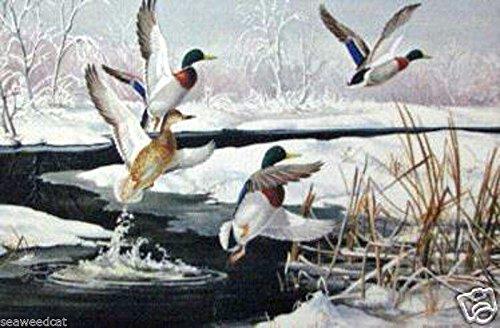 (Early Arrivals - Mallards by Maynard Reece - Ducks)