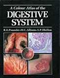 img - for A Colour Atlas of the Digestive System book / textbook / text book