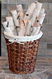 Wilson Enterprises White Birch Log