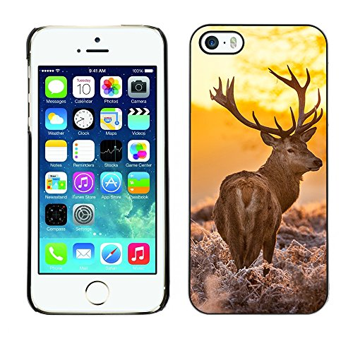 [ For APPLE IPHONE 5 / 5S ][ Xtreme-Cover ][ Coque Rigide Case Cover ] - Majestic Stag Deer