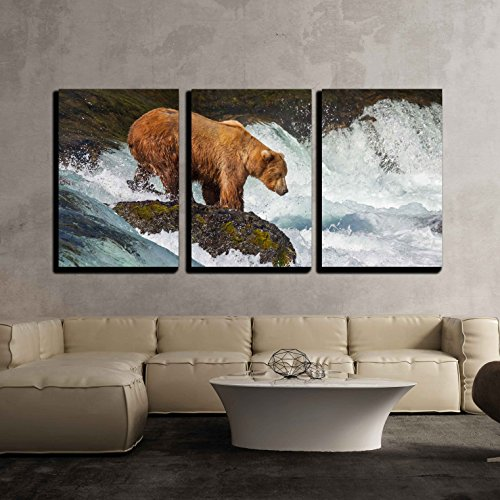 wall26 - 3 Piece Canvas Wall Art - Brown Bear on Alaska - Modern Home Decor Stretched and Framed Ready to Hang - 24