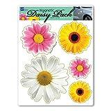 Daisy Flower Pack Magnet