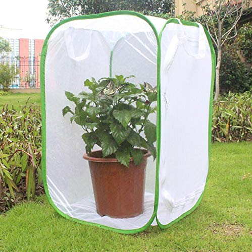 CUSFULL Insect and Butterfly Habitat Terrarium - 35.5 Inches Tall Collapsible for Storage Cage with Large Zipper Opening - Clear Window Panel -